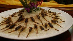 China: Fried Scorpions